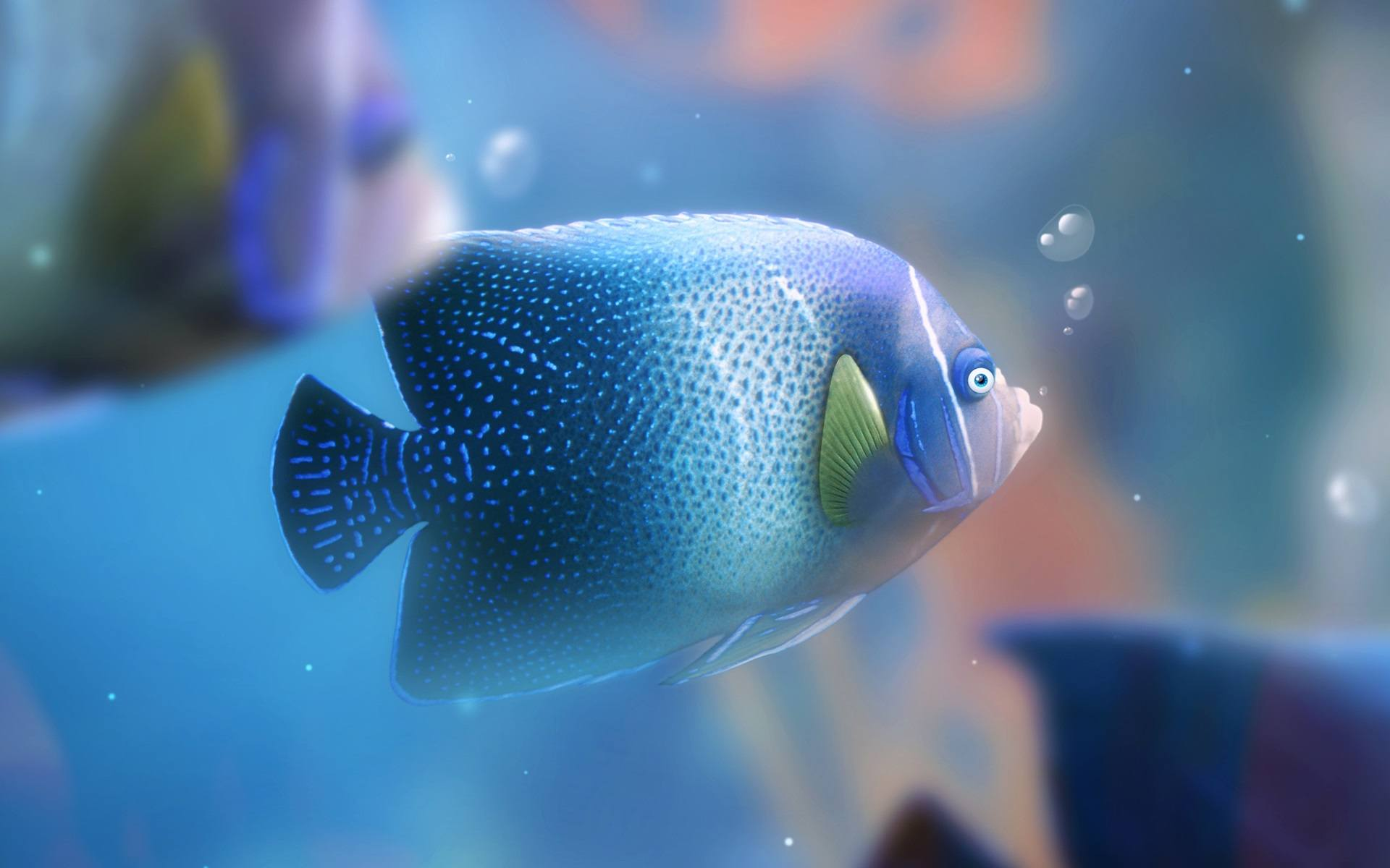 Fish Wallpaper 052