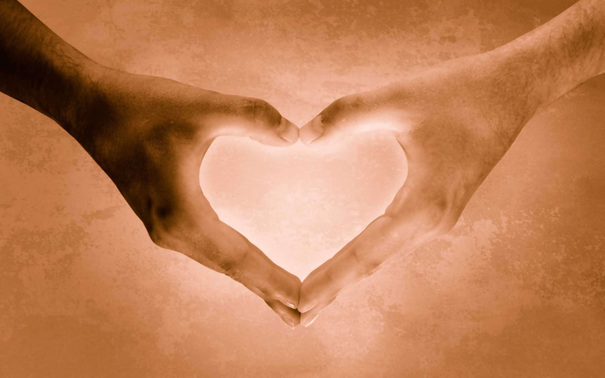 Hearth Love Wallpaper 029