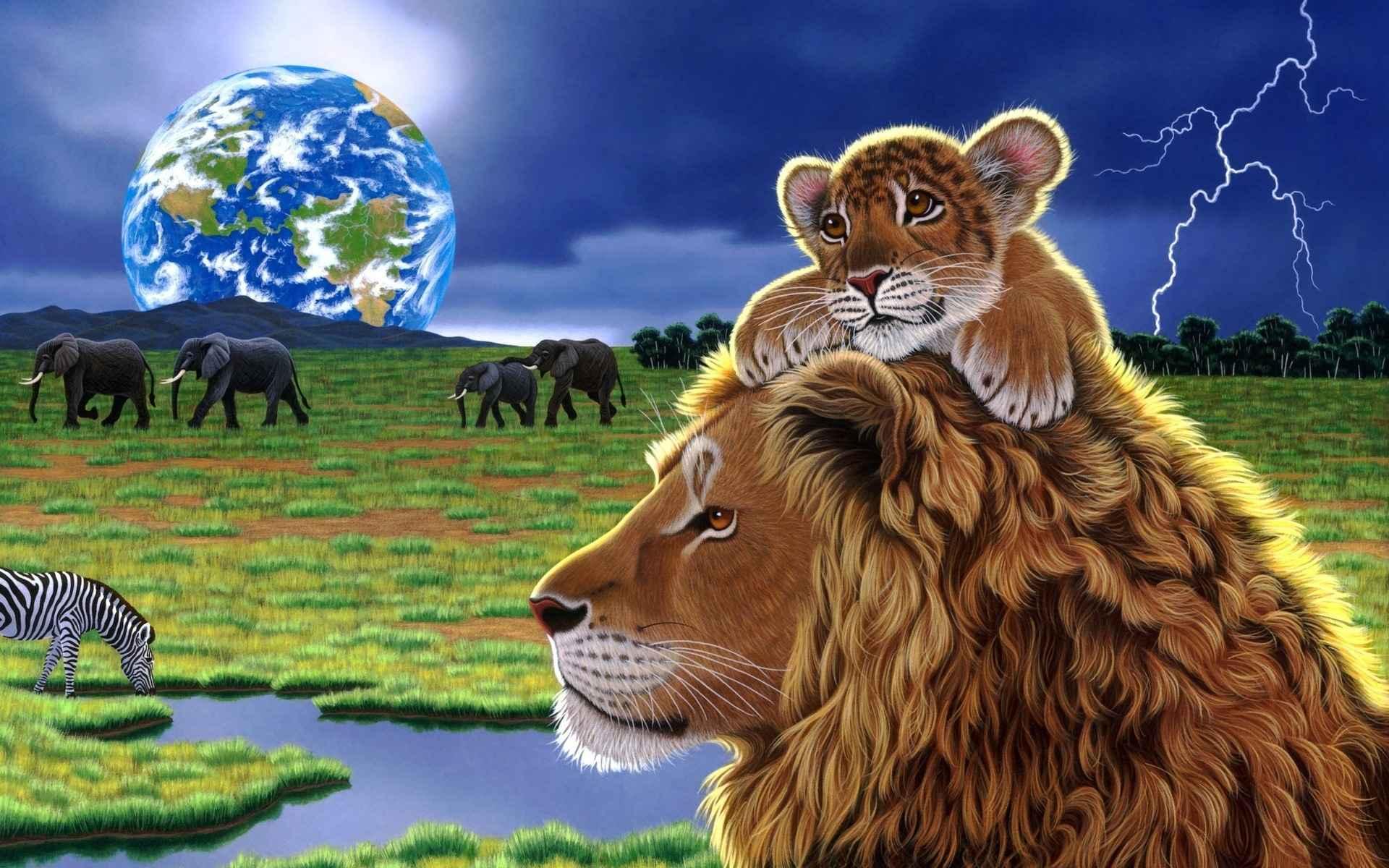 Lion Wallpaper 041