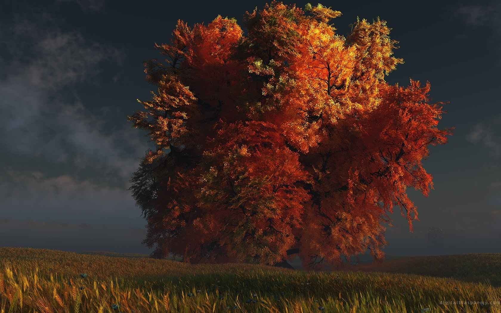 Trees Wallpaper 019
