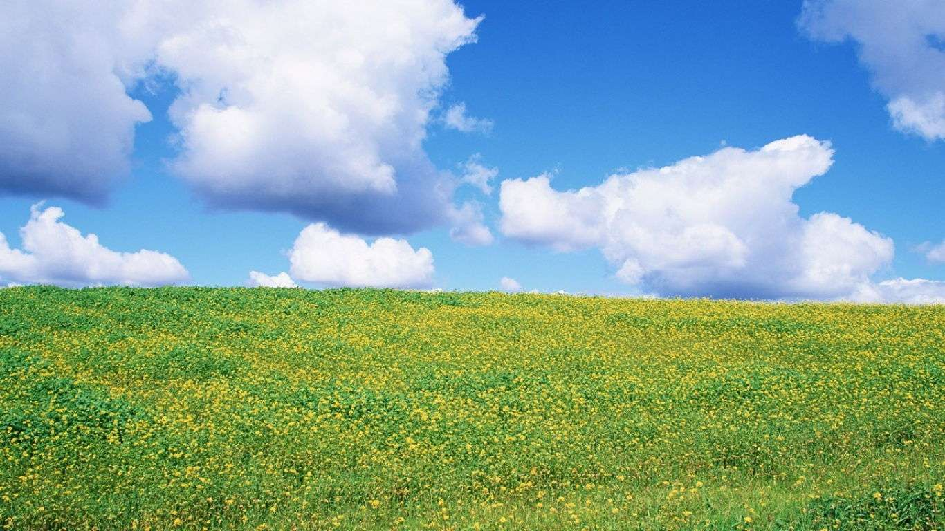Spring Nature Wallpaper 036