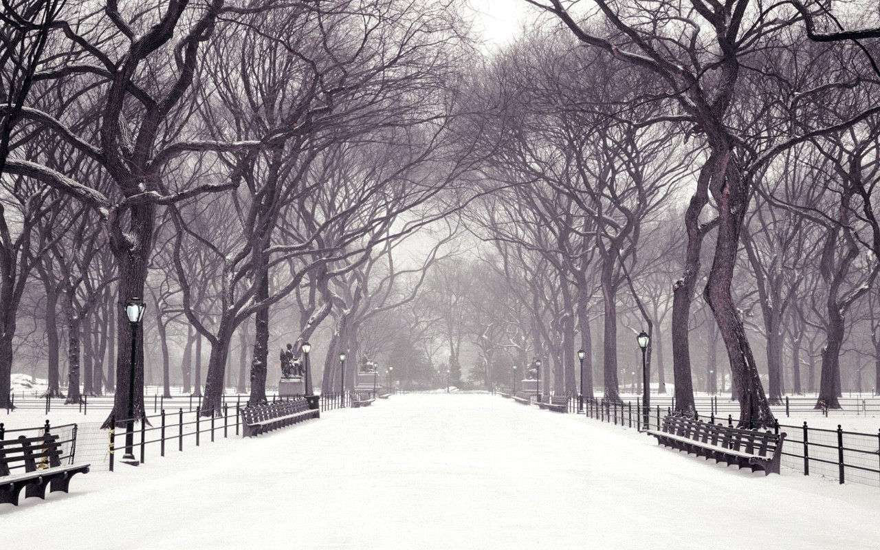 Winter Wallpaper 023