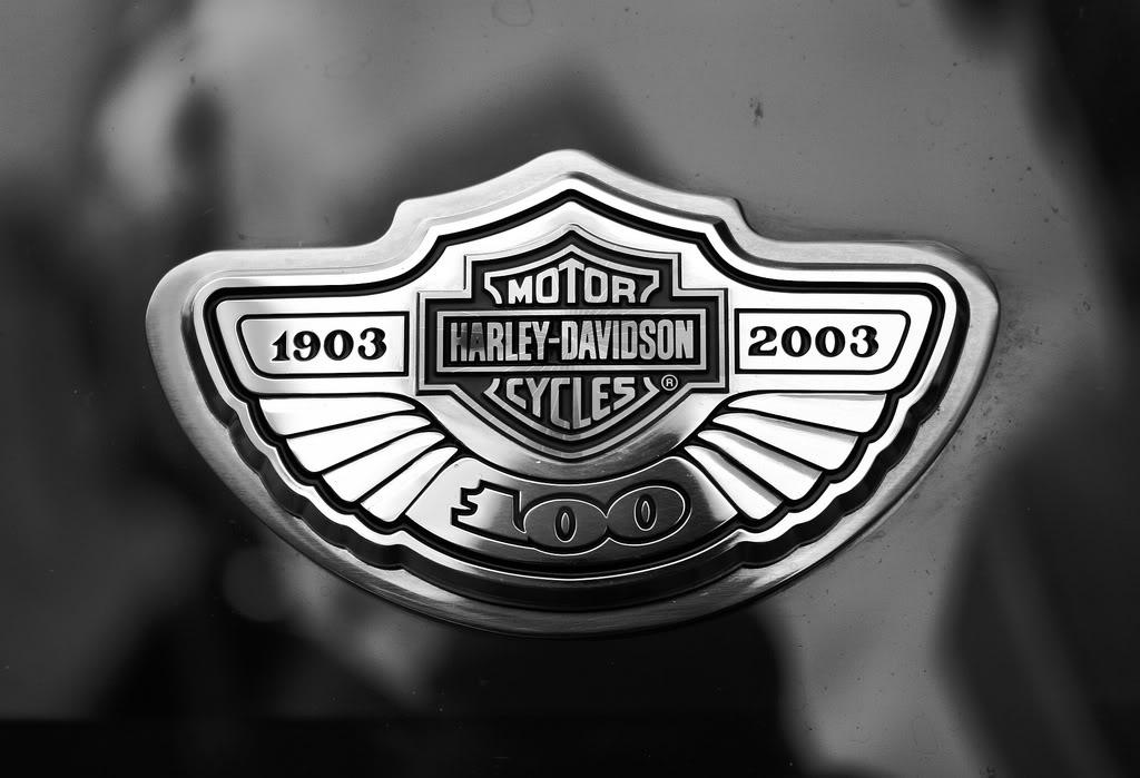 Harley Davidson Logo Wallpaper 19