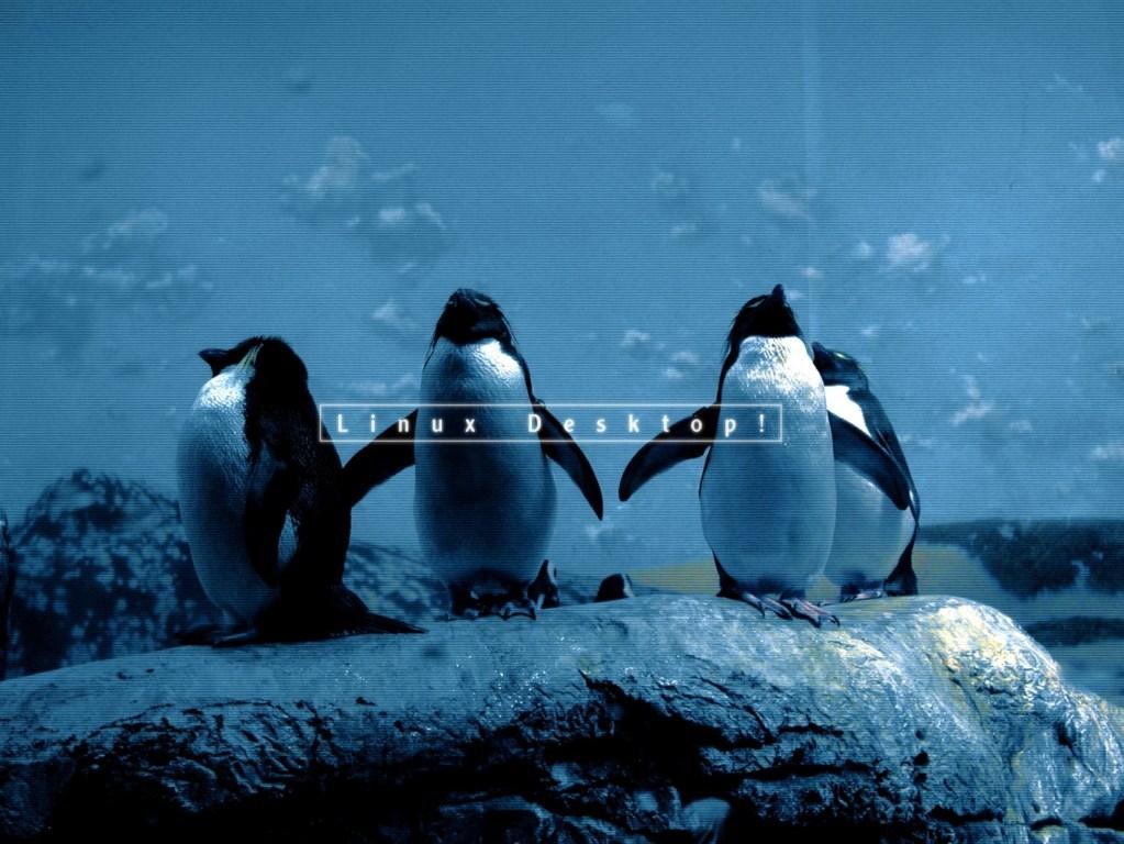 Linux Wallpaper 11