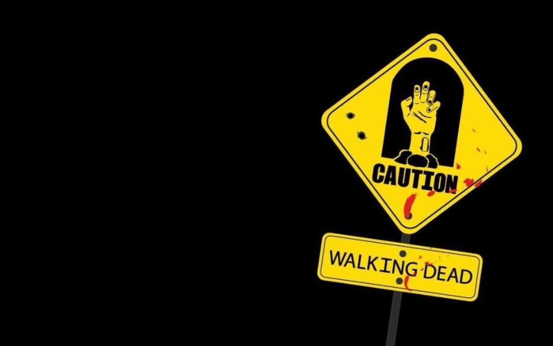 The Walking Dead Wallpaper 20