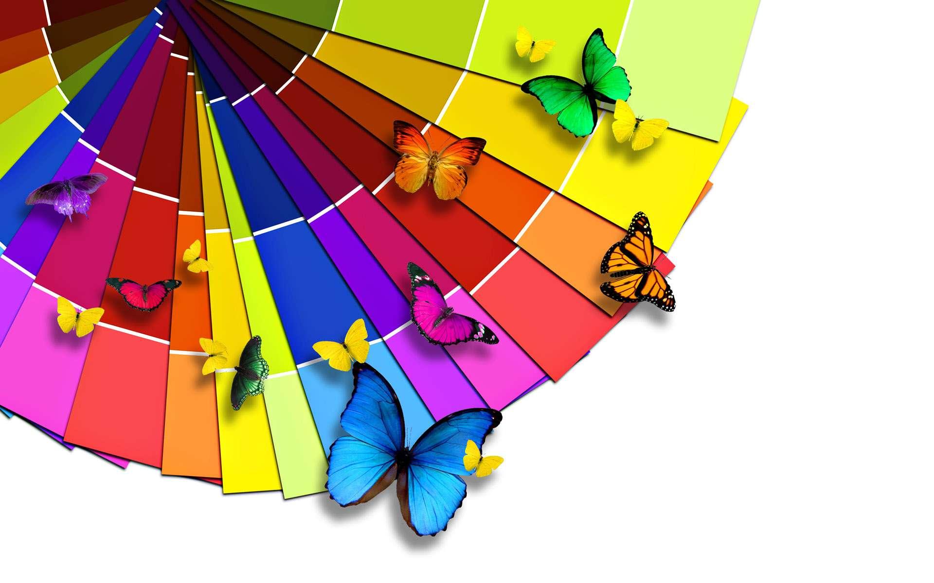 Butterfly Wallpaper 005