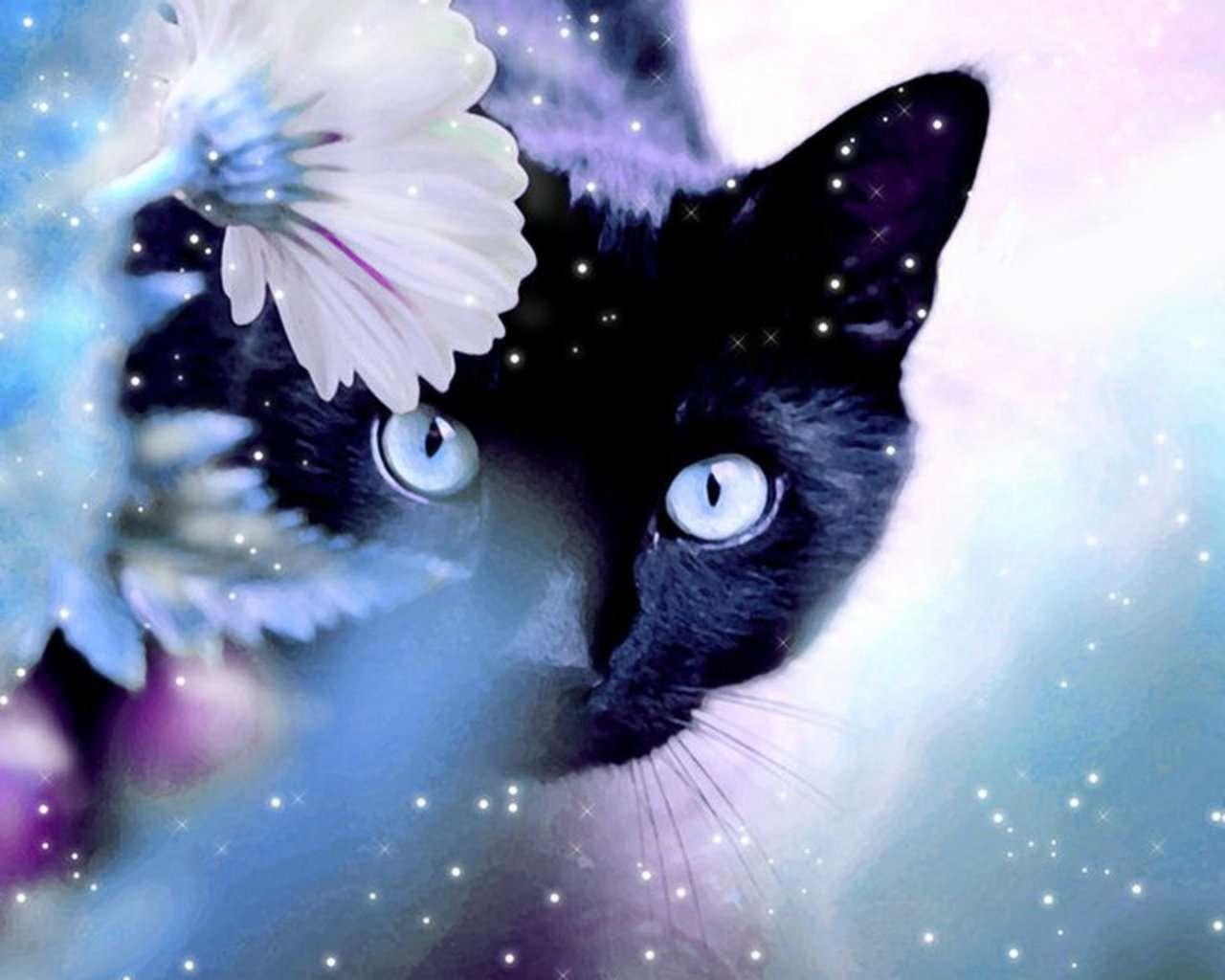 Cat Wallpaper 135