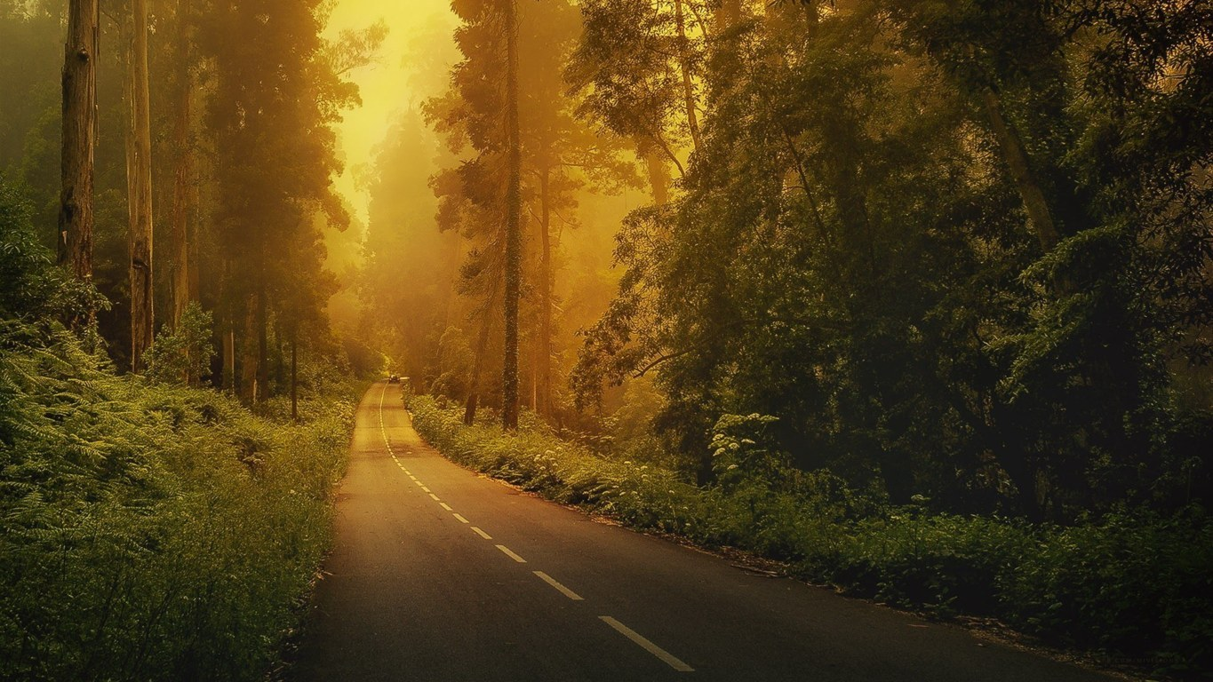 Road Wallpaper 010
