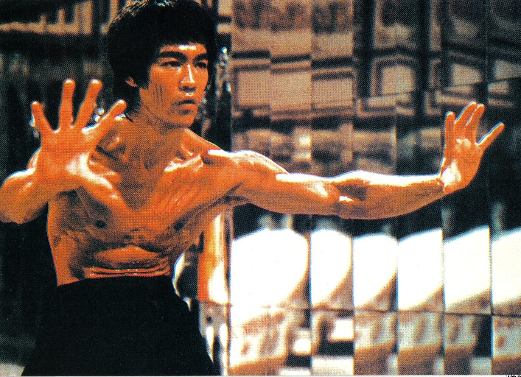 Bruce Lee Wallpaper 3